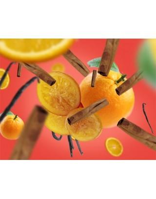 Orange de Cannelle 500ml Recambios