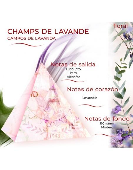 Champs de Lavande FLORALES