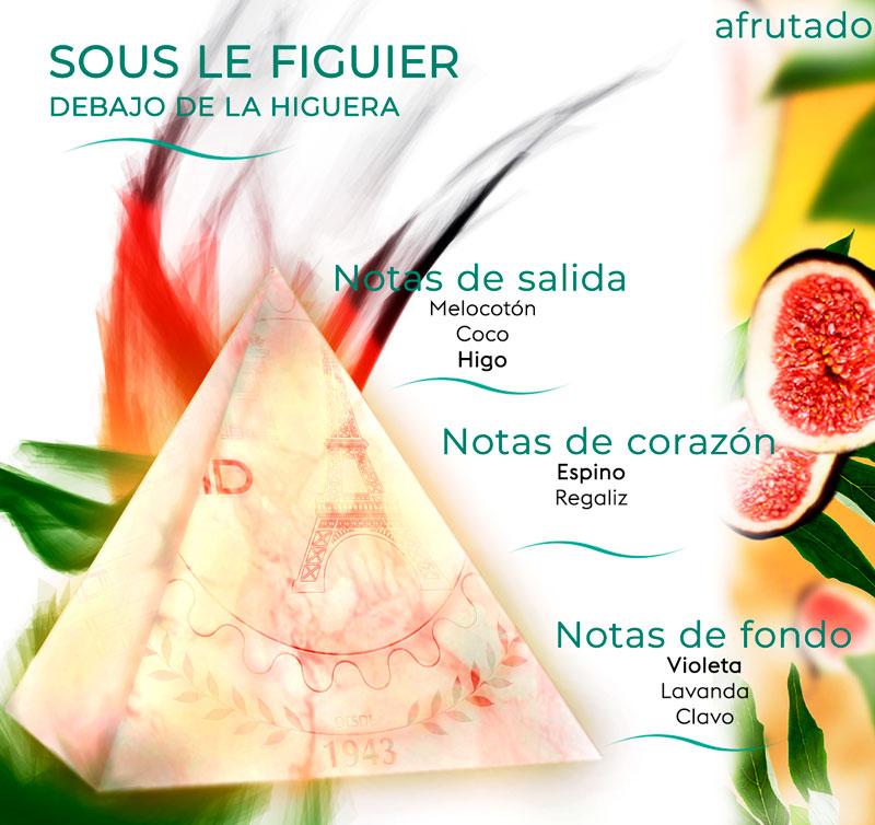 Pirámide olfativa de Debajo de la Higuera