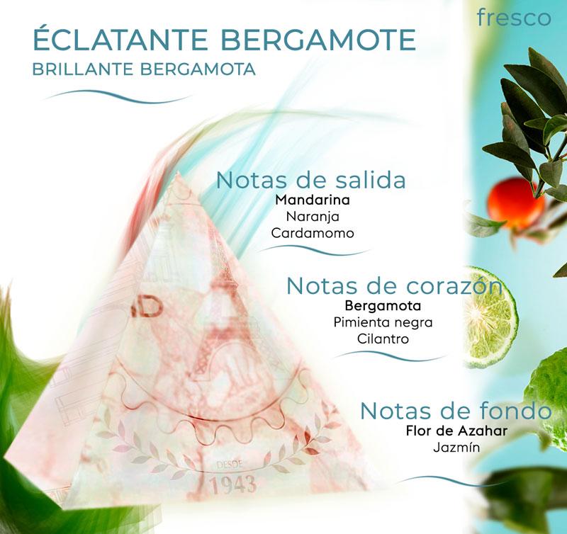 Pirámide olfativa Brillante Bergamota