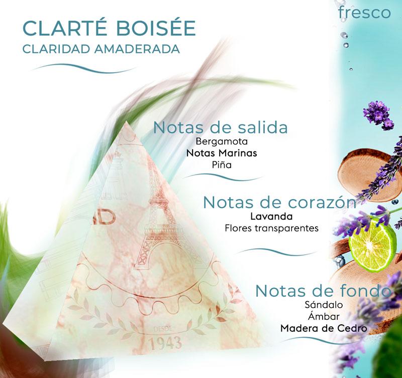 Pirámide olfativa Clarté Boisée