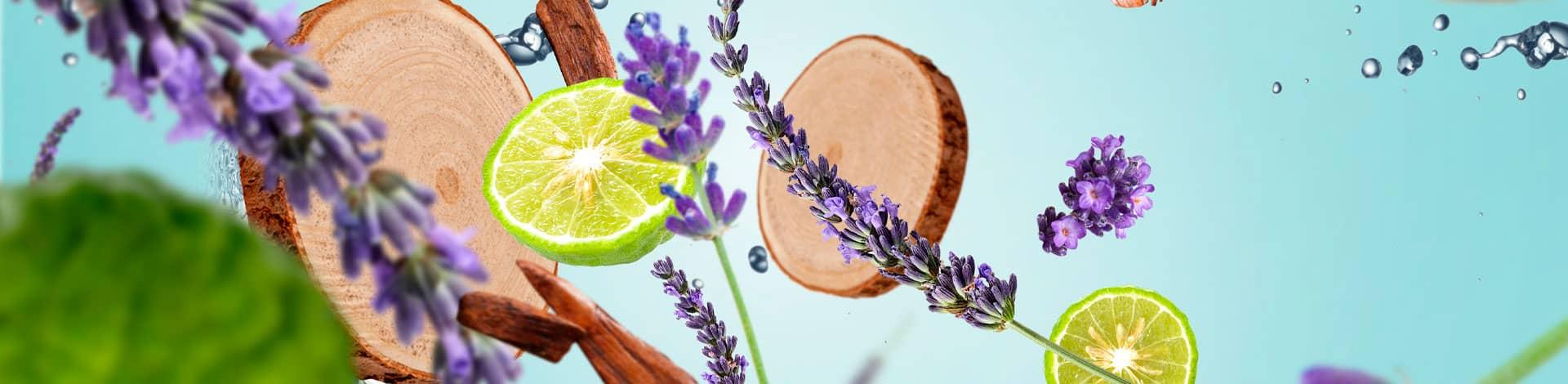 Amaderada fresca aroma fresco