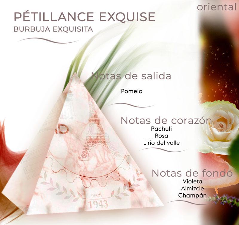 Pirámide olfativa burbuja exquisita