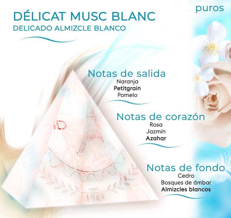 Pirámide olfativa de Délicat Musc Blanc