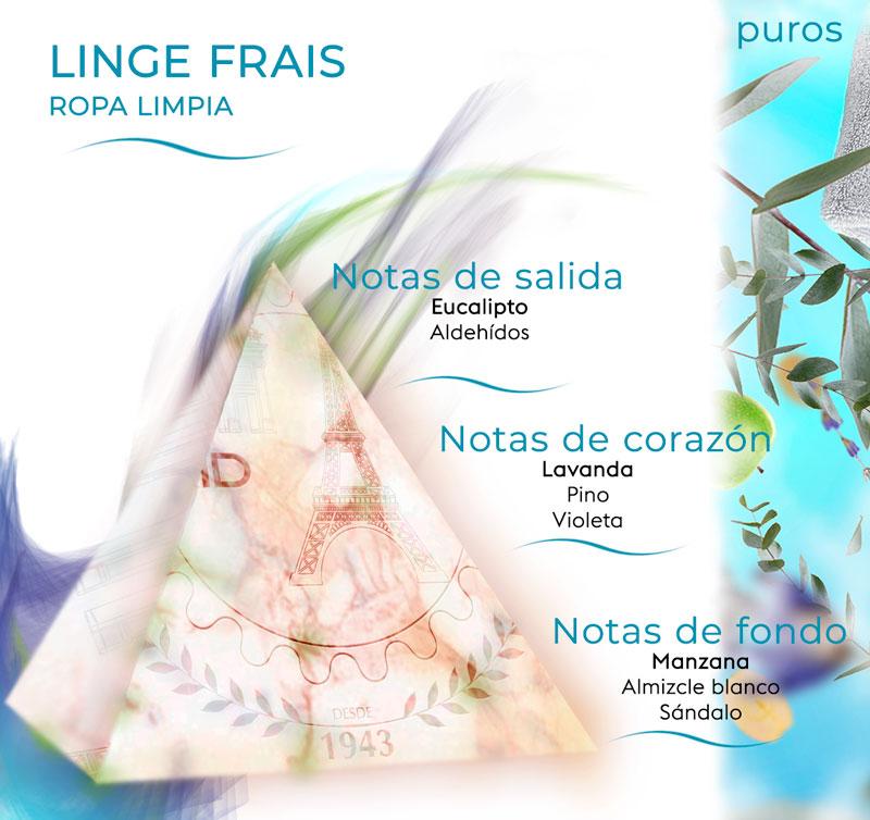 pirámide olfativa de Linge Frais