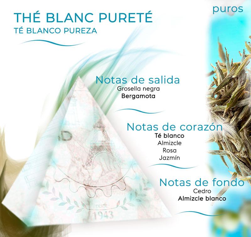 Pirámide olfativa de Té blanco pureza