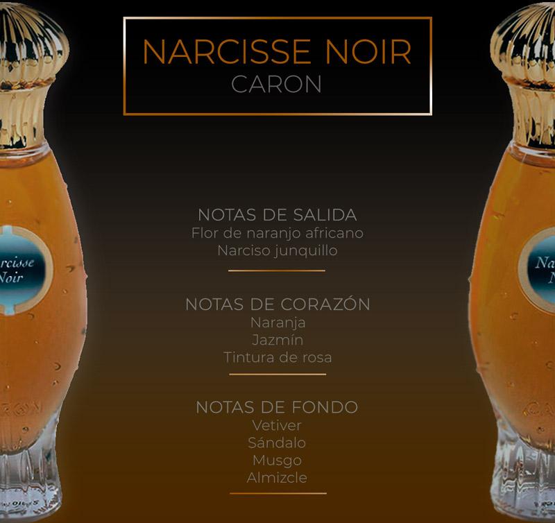 Pirámide olfativa de Narcisse Noir