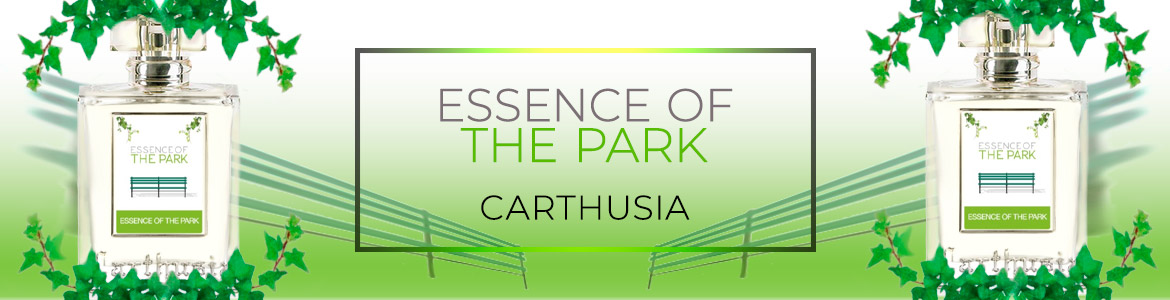 essence of the park banner