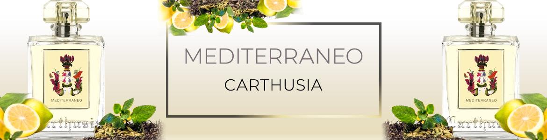 Mediterraneo banner