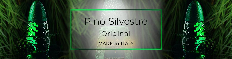 Pino Silvestre